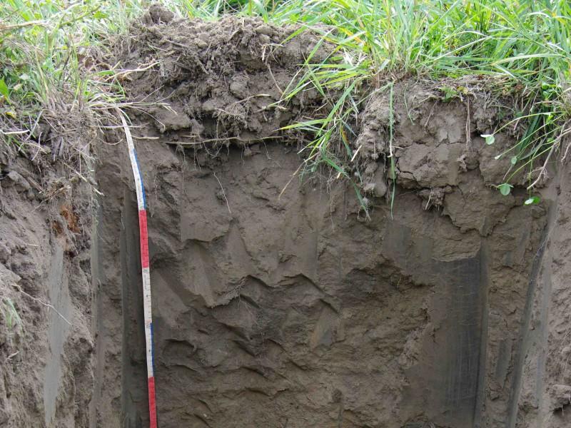 étude du sol